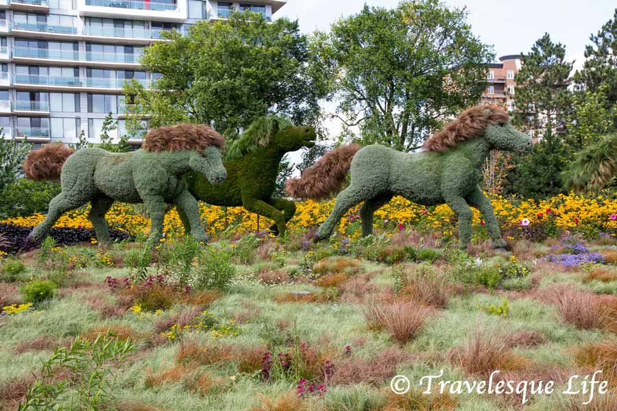 MosaïCanada 150 - Attraction Ottawa - a walk through Jacque Cartier Park celebrating Canada's 150th birthday through beautiful topiaries - travelesquelife.com